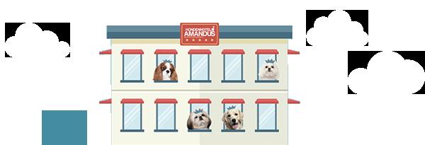 Hondenhotel Amandus
